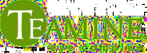 Teamine-logo